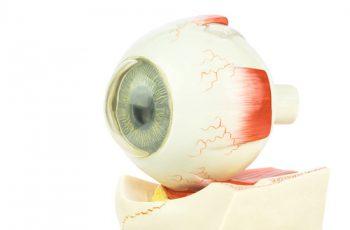 desprendimiento_retina realvision