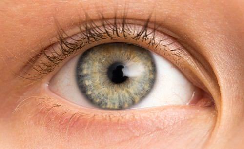 La mácula del ojo puede verse afectada